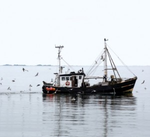 Trawler-300x274