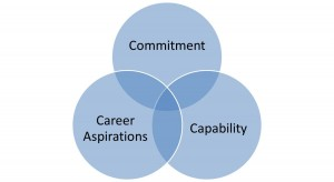 Talent-Management-Blog-Picture-2-3-Cs-300x164